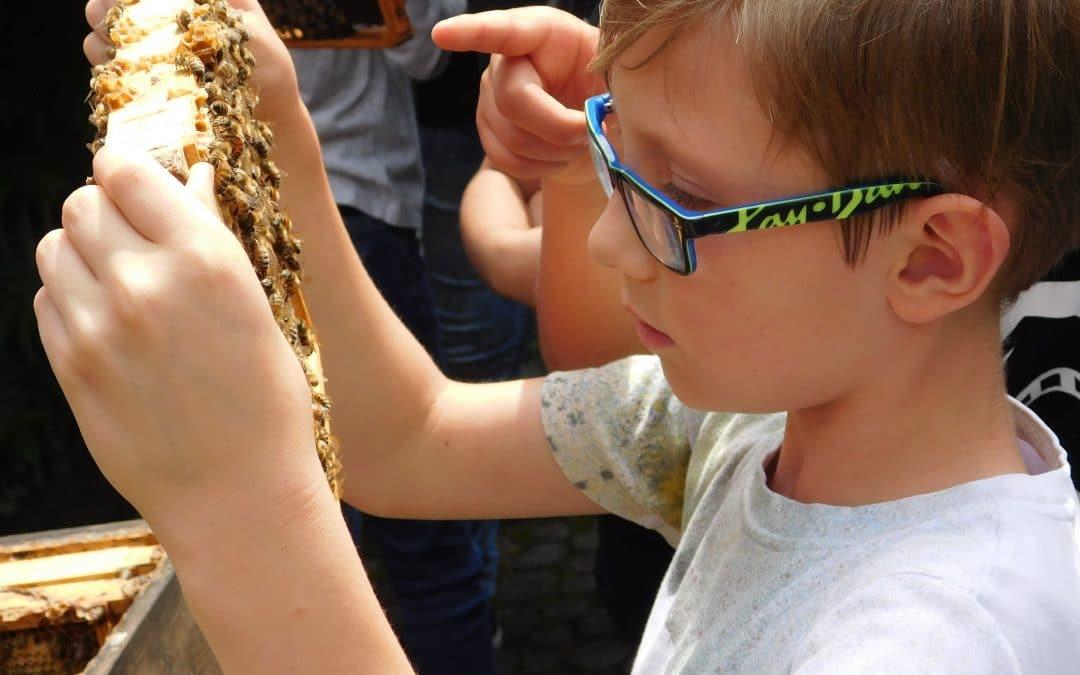 Mutige Kinder und zahme Bienen! Besuch vom Imker in der Ferientagesstätte Pfingsten