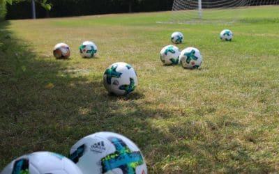 Fortbildung: Spiel und Bewegung mit dem Ball – Basistechniken kennenlernen
